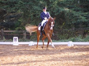 FEI Dressage trainer and lessons Seattle WA