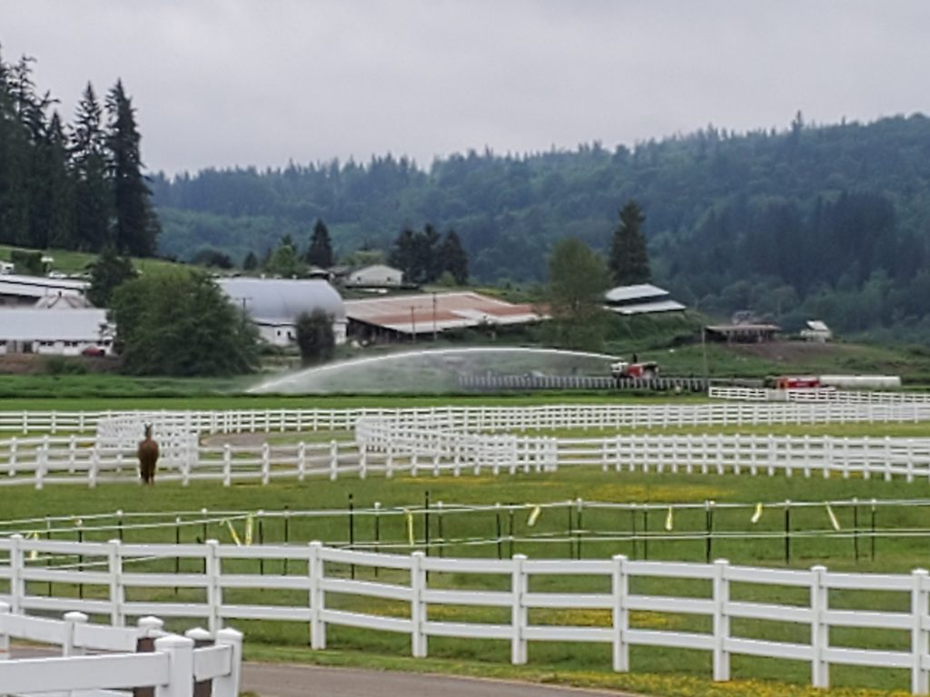 River Run Ranch Carnation WA